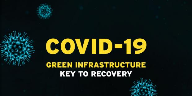Covid-19 Green Infrastructure image